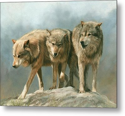 Three Wolves Metal Print by David Stribbling