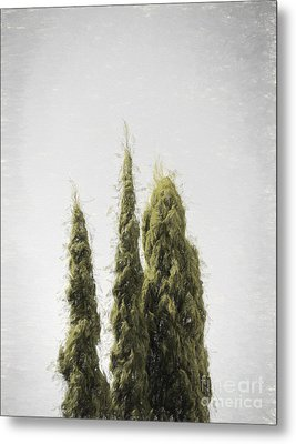 Threes - Without A Sound Metal Print by Jorgo Photography - Wall Art Gallery