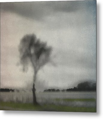 Through A Train Window Number 2 Metal Print by Carol Leigh