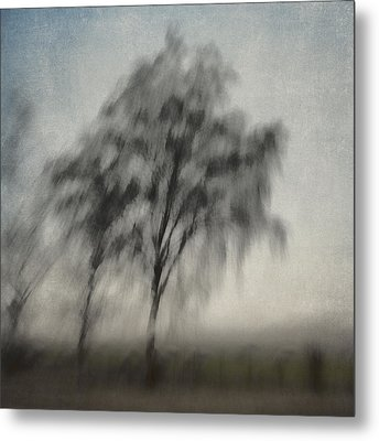 Through A Train Window Number 3 Metal Print by Carol Leigh