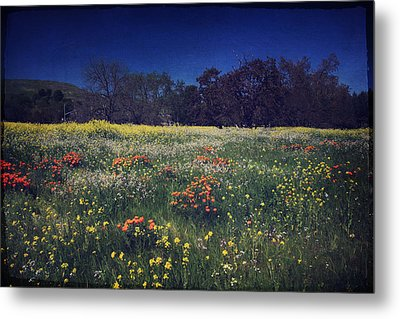 Through The Blooming Fields Metal Print by Laurie Search