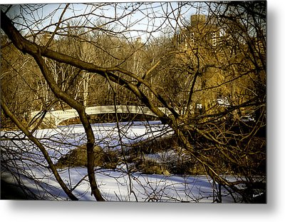 Through The Branches 2 - Central Park - Nyc Metal Print by Madeline Ellis