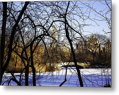 Through The Branches 3 - Central Park - Nyc Metal Print by Madeline Ellis