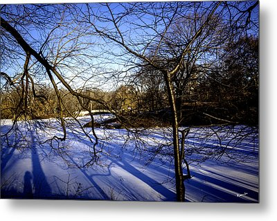Through The Branches 4 - Central Park - Nyc Metal Print by Madeline Ellis