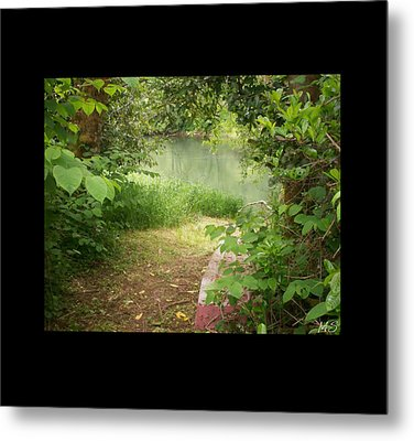 Through The Forest At Water's Edge Metal Print by Absinthe Art By Michelle LeAnn Scott