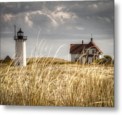 Race Point Light Through The Grass Metal Print