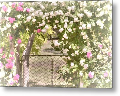 Metal Print featuring the photograph Through The Rose Arbor by Elaine Teague