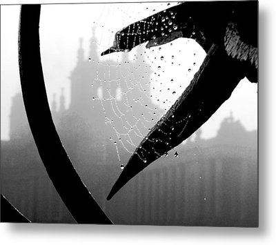 Through The Web Metal Print by Meaghan Troup