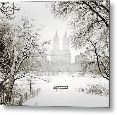 Through Winter Trees - Central Park - New York City Metal Print
