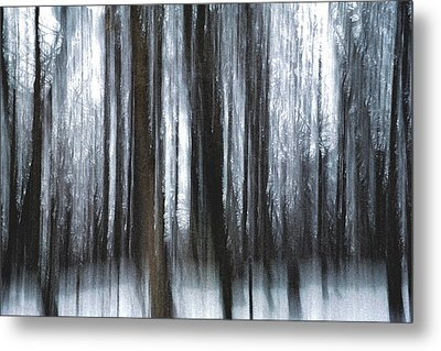 Metal Print featuring the photograph Through The Woods by Steven Huszar