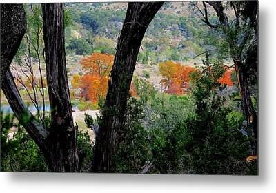 Metal Print featuring the photograph Thru The Trees by David  Norman
