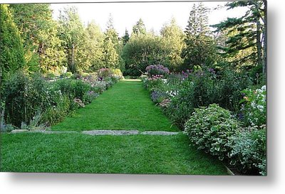 Thuya Gardens In Northeast Harbor Maine Metal Print