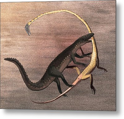 Ticinosuchus And Tanystropheus Fighting Metal Print