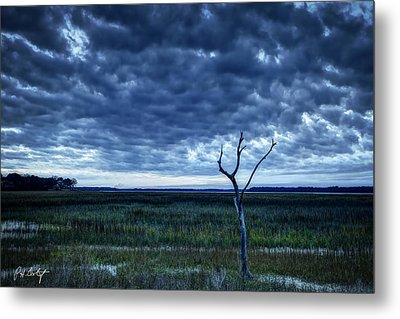 Tidal Marsh View Metal Print by Phill Doherty