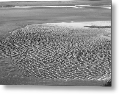 Metal Print featuring the photograph Tide Pool I by Amanda Holmes Tzafrir
