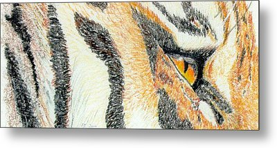 Metal Print featuring the drawing Tiger Amber by Stephanie Grant