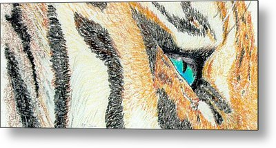 Metal Print featuring the drawing Tiger Blue by Stephanie Grant
