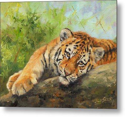 Tiger Cub Resting Metal Print