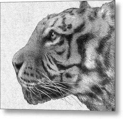 Tiger Metal Print by Eric Fan