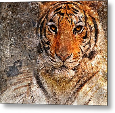 Tiger Life Metal Print