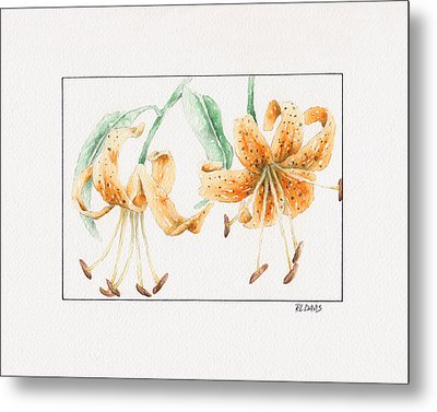 Metal Print featuring the painting Tiger Lilies by Rebecca Davis