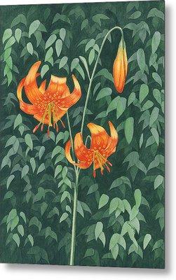 Tiger Lily Metal Print
