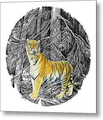 Tiger Metal Print by Natalie Berman