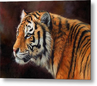 Tiger Portrait  Metal Print by David Stribbling