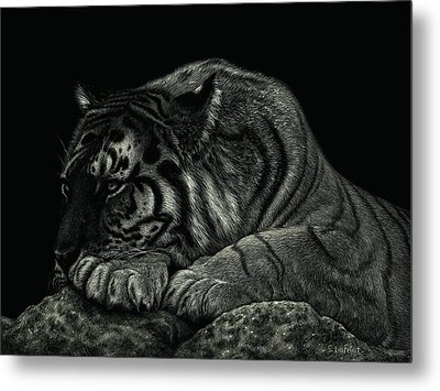 Tiger Power At Peace Metal Print by Sandra LaFaut