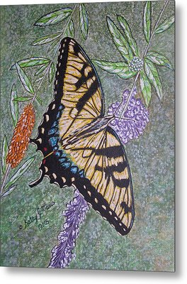 Tiger Swallowtail Butterfly Metal Print by Kathy Marrs Chandler