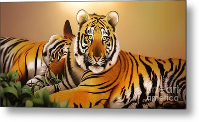 Tiger Tales Metal Print by Shannon Rogers