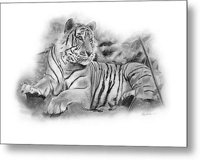 Tiger Tiger Metal Print by Timothy Ramos