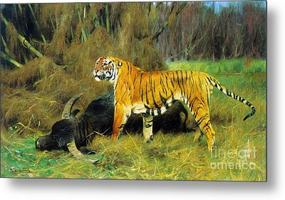 Tiger With Its Prey Metal Print by Pg Reproductions
