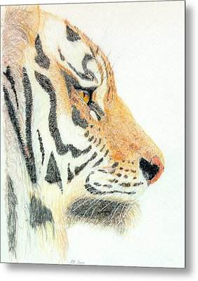 Metal Print featuring the drawing Tiger's Head by Stephanie Grant