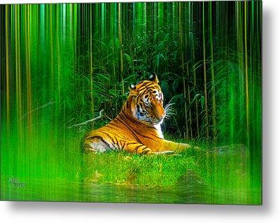 Tigers Misty Lair Metal Print
