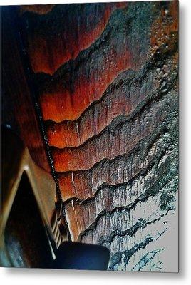 Tigerwood Metal Print by Jaime Neo