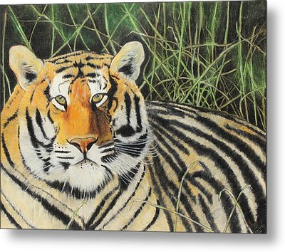 Metal Print featuring the painting Tigress by Jeanne Fischer