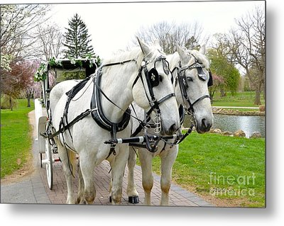 Tillie And Bruce Metal Print