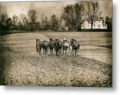 Tilling The Fields Metal Print by Tom Mc Nemar