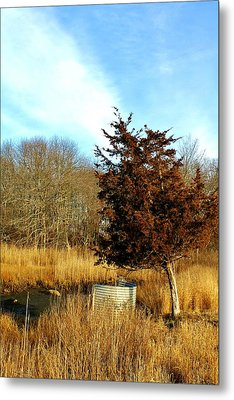 Tilted Tree  Metal Print