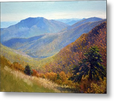 Timber Hollow Overlook Metal Print