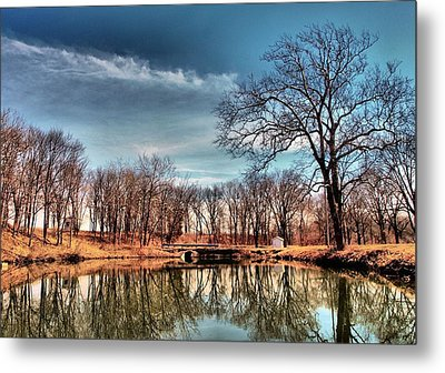 Time Out  Metal Print by Tom Druin
