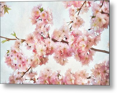 Time To Bloom Metal Print by Gynt