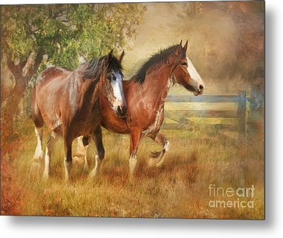 Time To Play Metal Print by Trudi Simmonds
