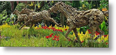 Time To Run Metal Print by Clare Bevan