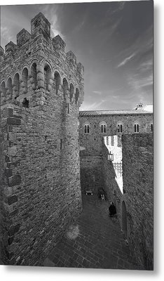 Time Will Reveal Metal Print by Laurie Search
