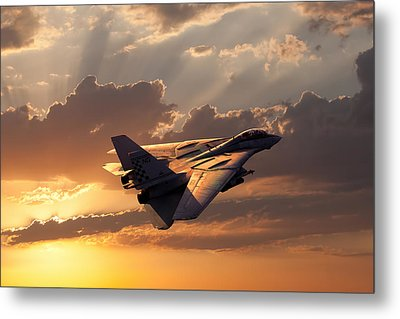 Timeless Beauty Tomcat Metal Print
