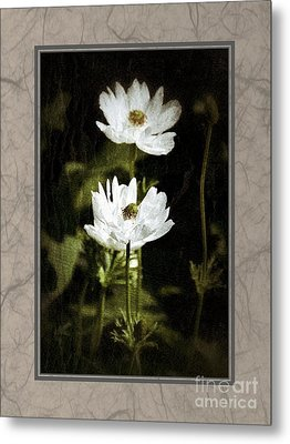 Metal Print featuring the photograph Timeless Two by Darla Wood
