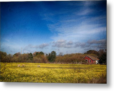 Times Like These Metal Print by Laurie Search
