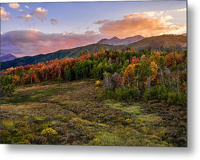 Timp Fall Glow Metal Print by Chad Dutson